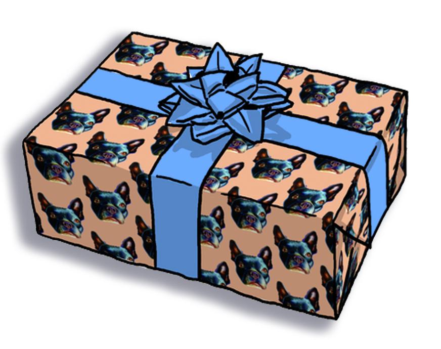 boston terrier wrap