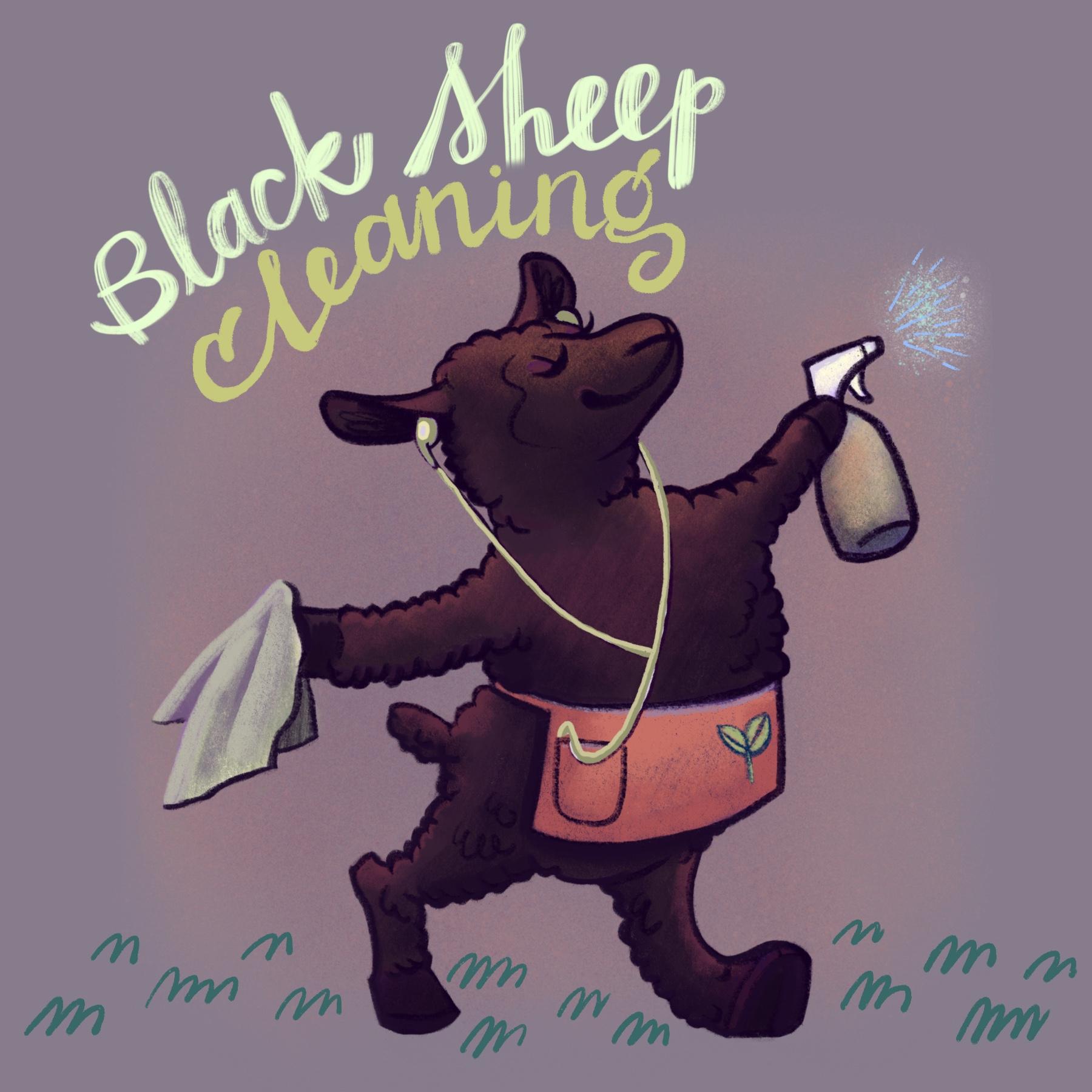 Black Sheep Cleaner
