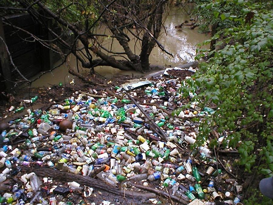 Third Creek Campen (2).jpg