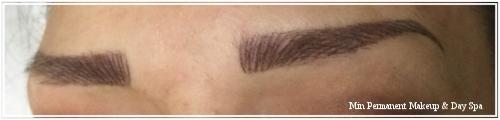 sculpted eyebrow