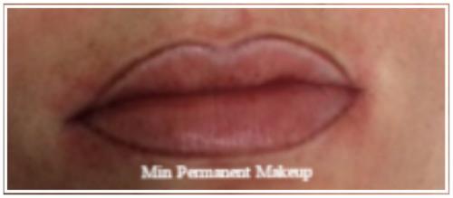 lip liner 1