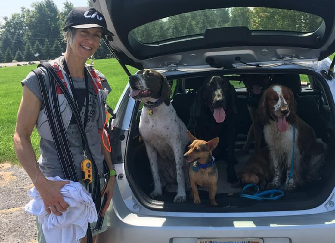 rebekah weiner - Rebekah is a handler in the Worcester area! She has a vibrant pack of pups. Rebekah is an enthusiastic hiker and avid cyclist. She also works part time at a local specialty pet food store and is well versed in Pet Nutrition! Follow Rebekah and her pack at @adventuresindogtown