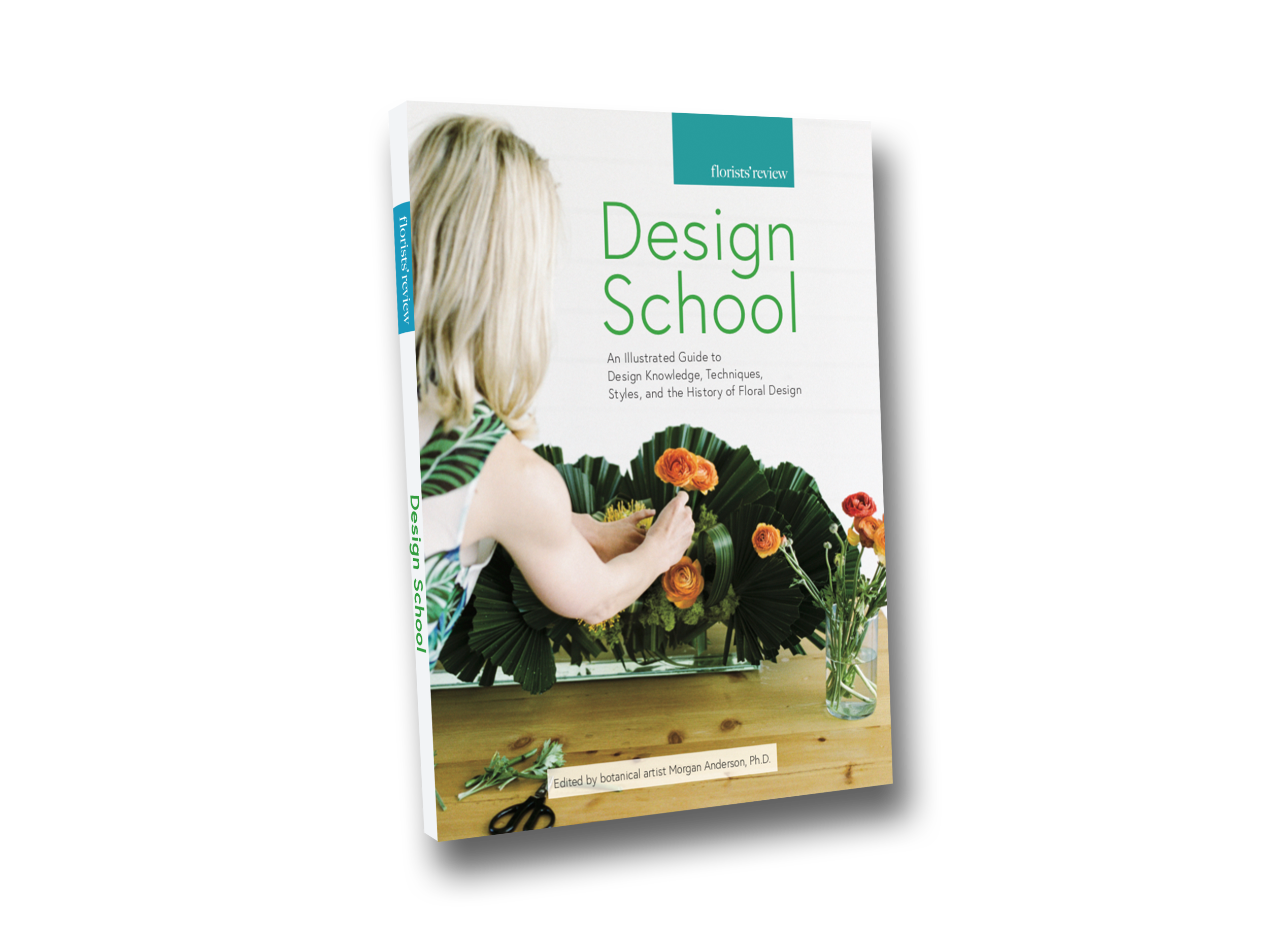 DS-book-mockup.png
