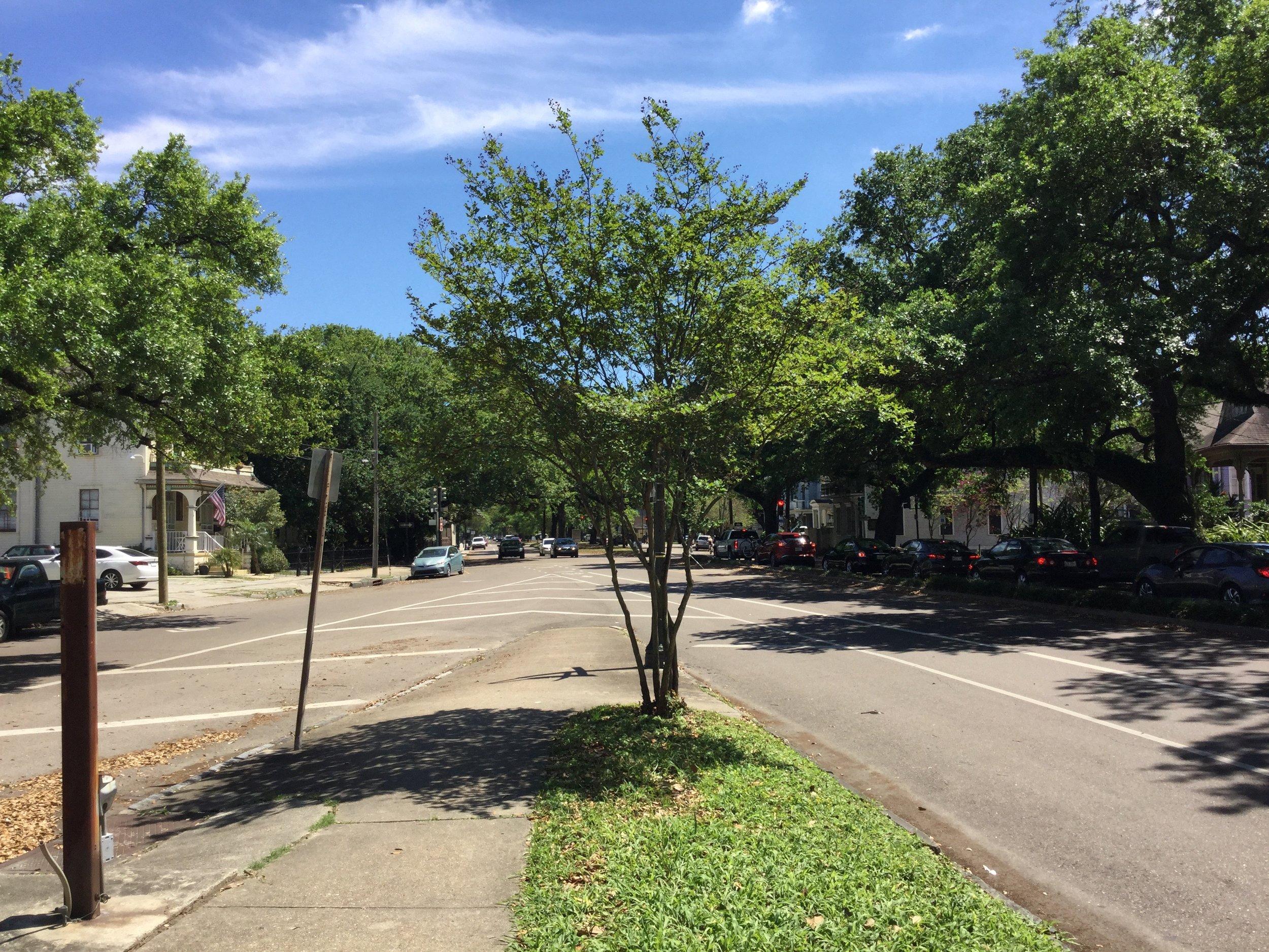 Where Bayou Road crosses Esplanade Avenue in New Orleans.
