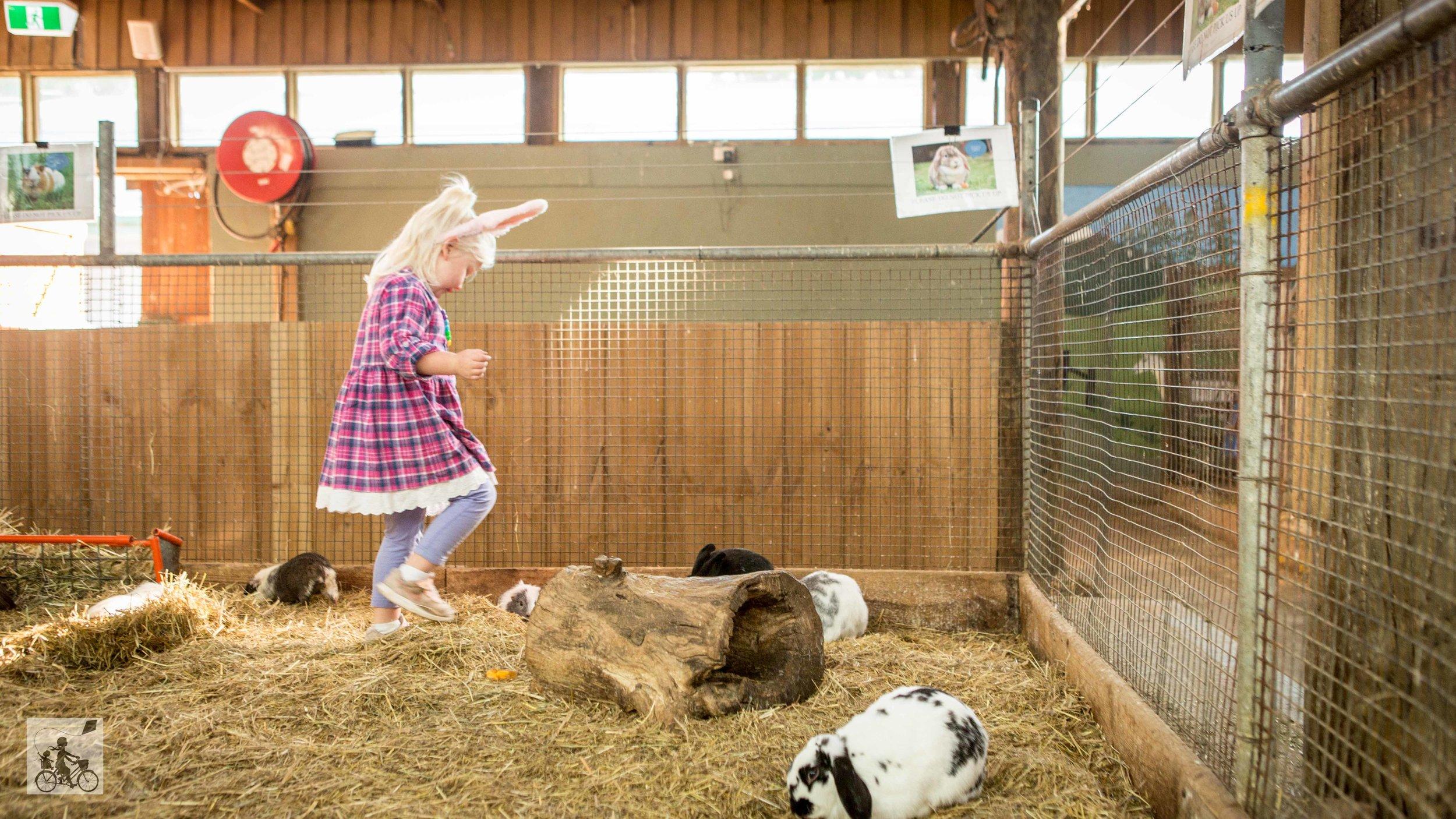 myuna farm, doveton — mamma knows south
