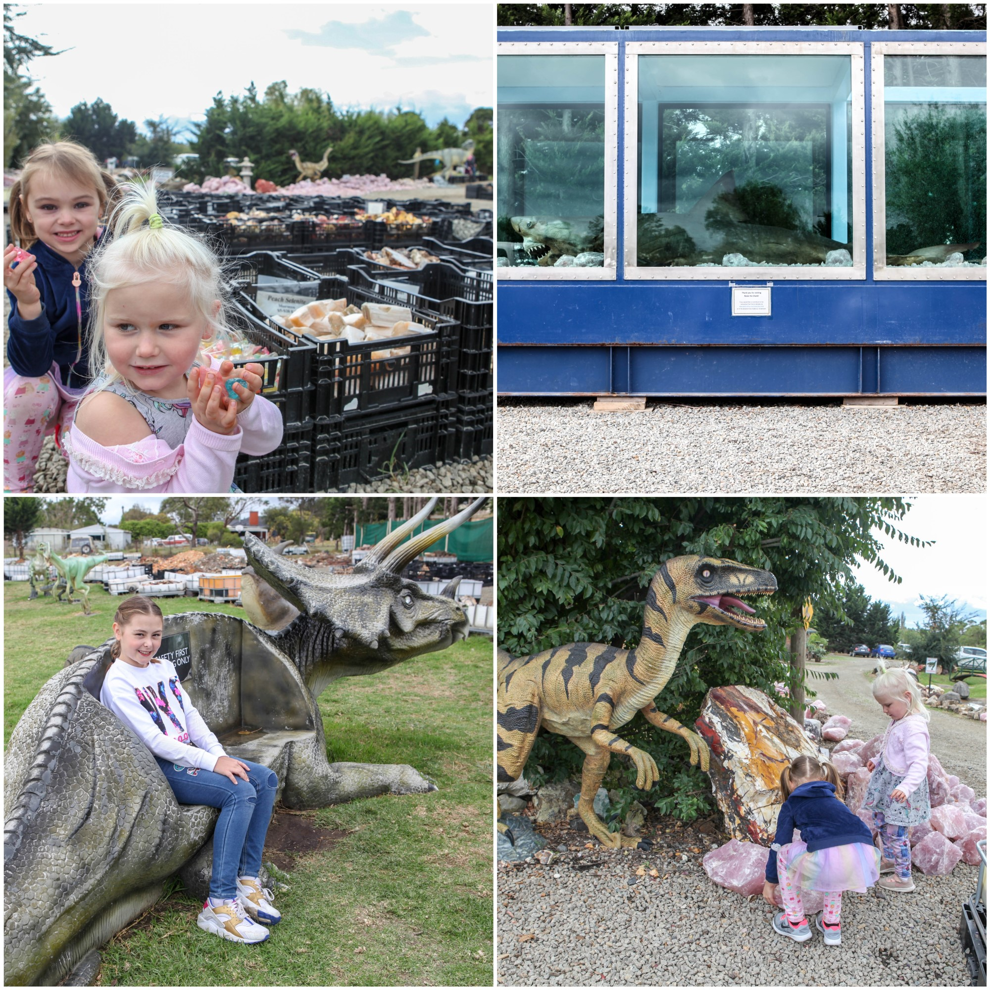 Mamma Knows South -crystal world & prehistoric journeys exhibitions, devon meadows