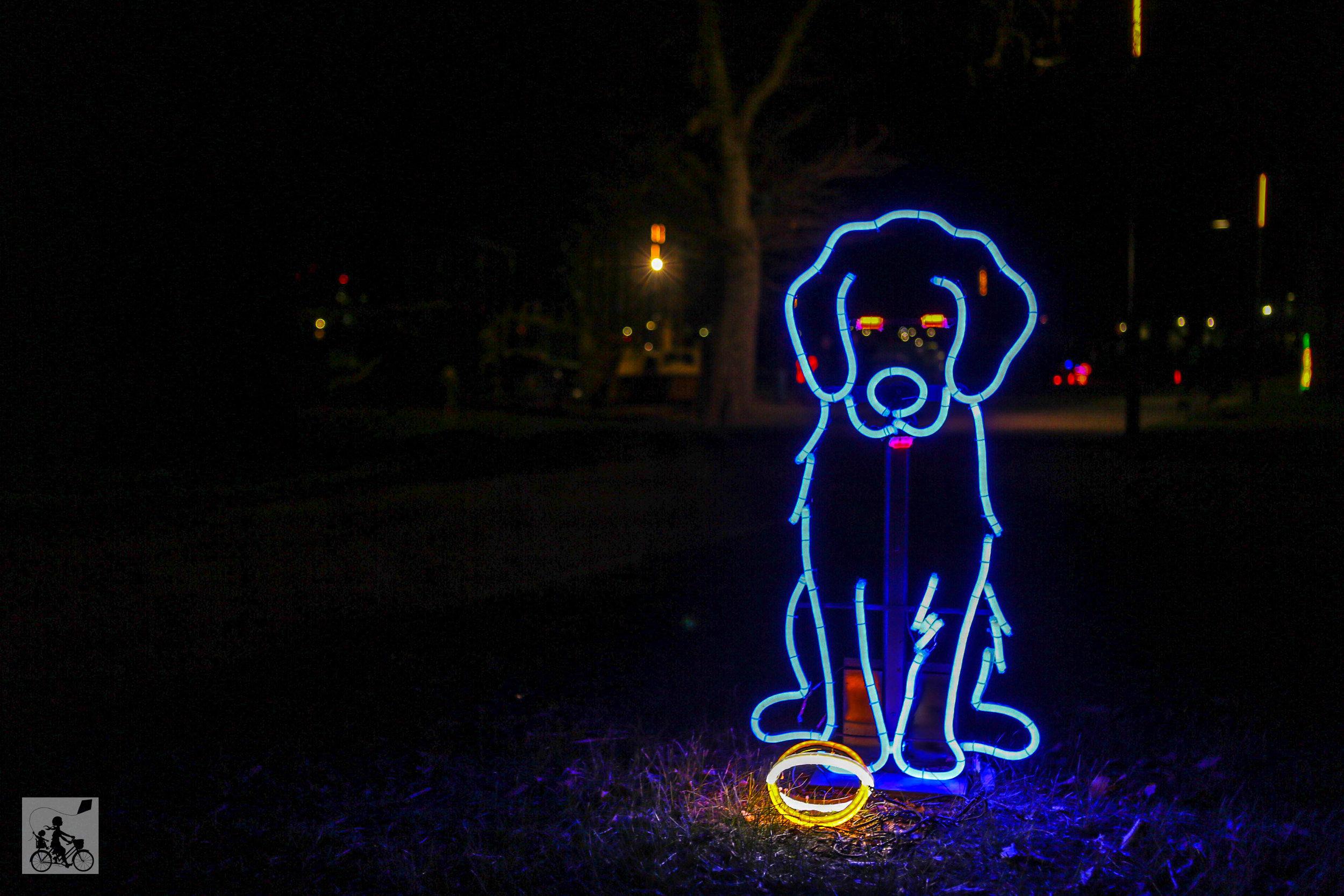Neon Dog Park  - Mamma Knows West (31 of 31).jpg