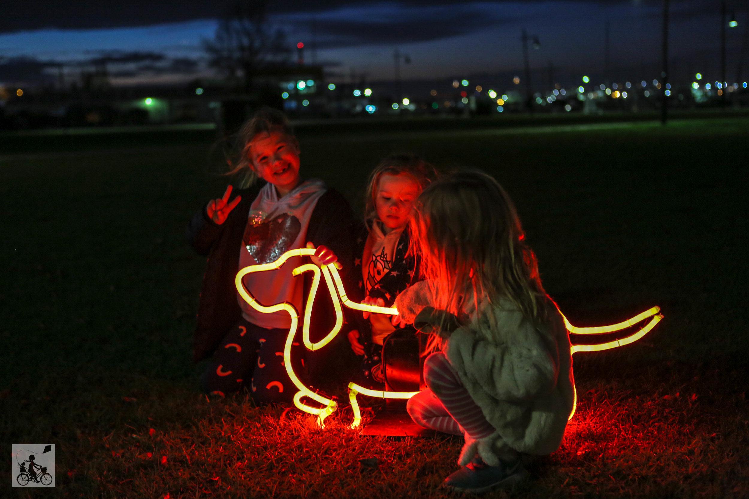 Neon Dog Park  - Mamma Knows West (26 of 31).jpg