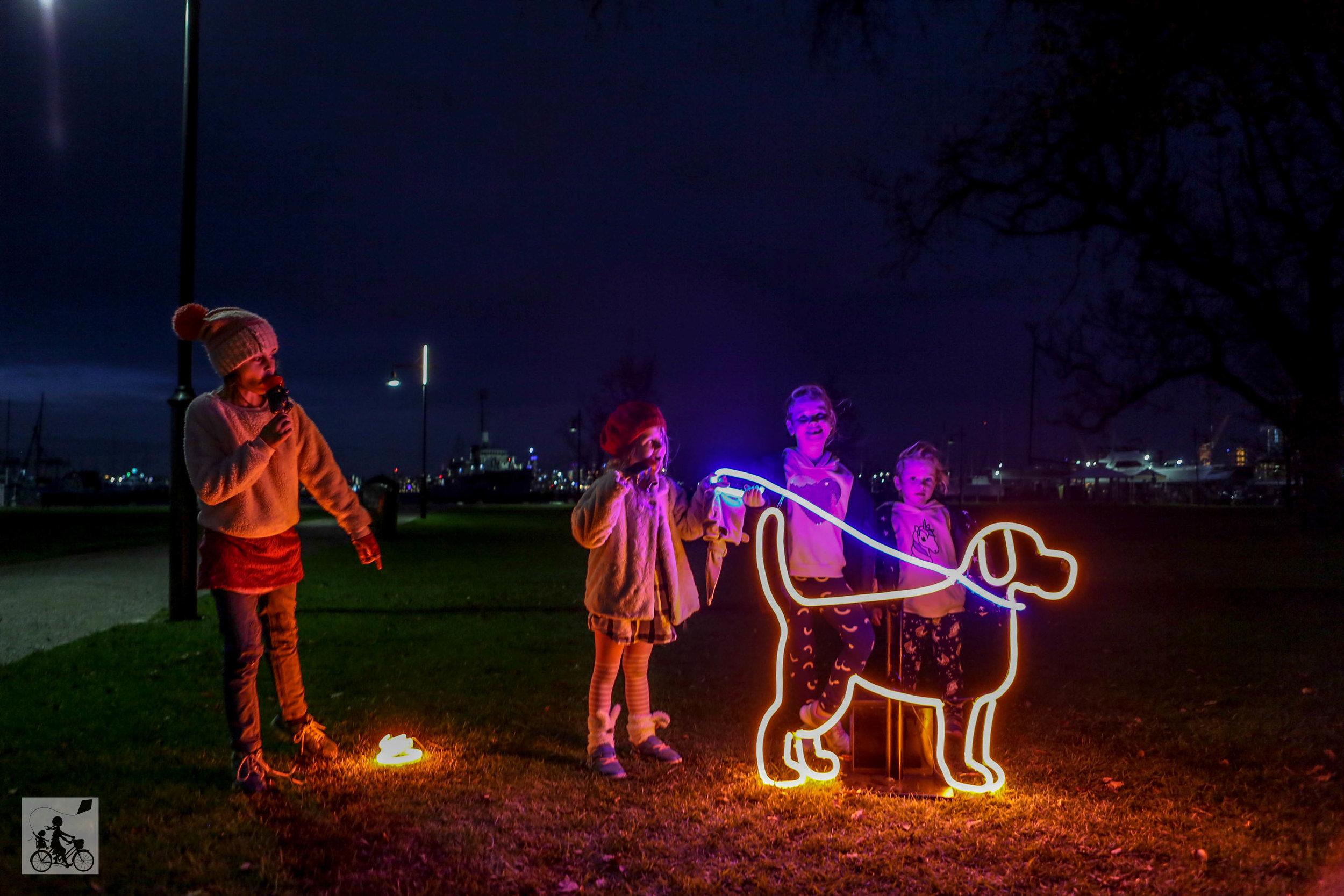 Neon Dog Park  - Mamma Knows West (9 of 31).jpg