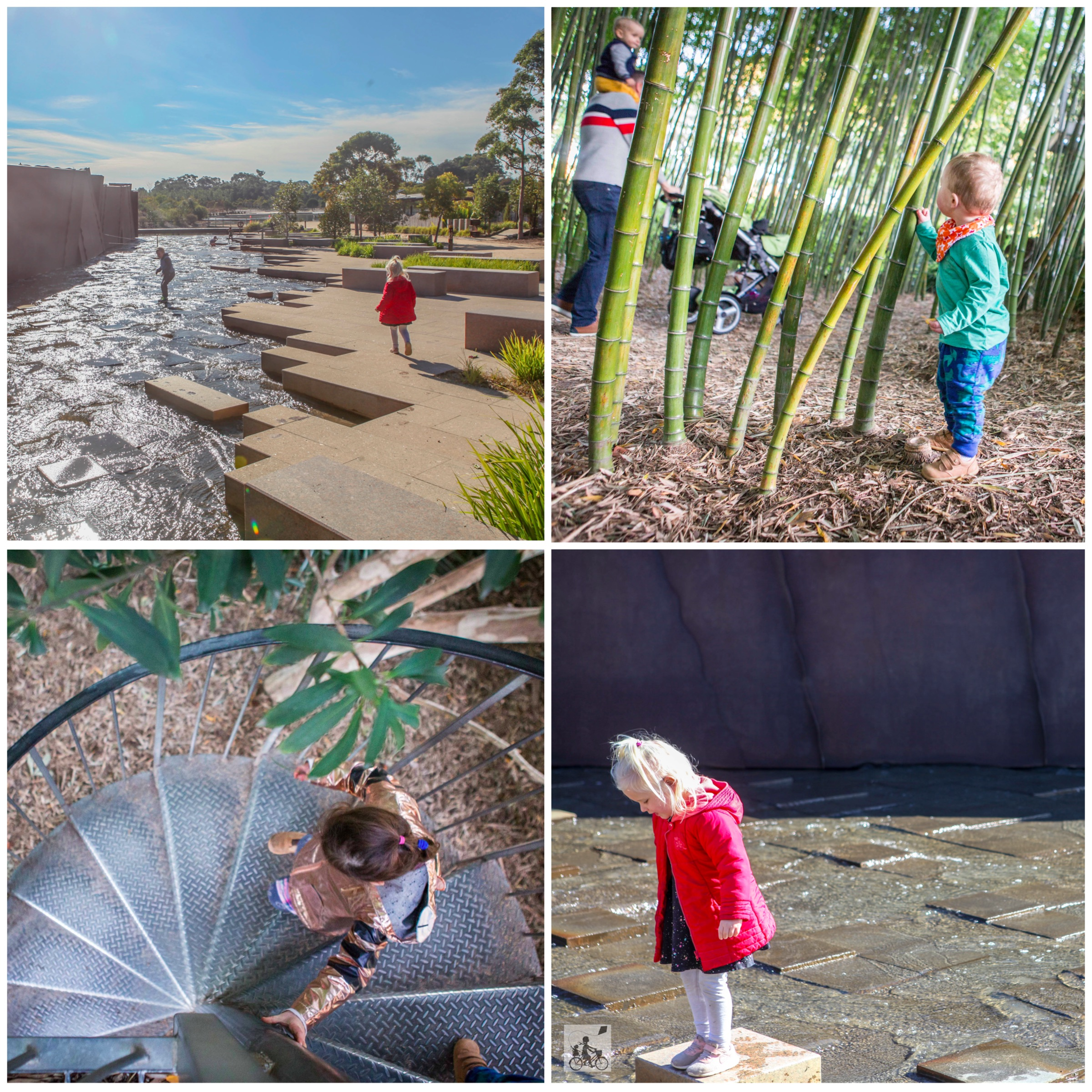 02 cranbourne Botanical Gardensl - Mamma Knows South (5 of 75).jpg
