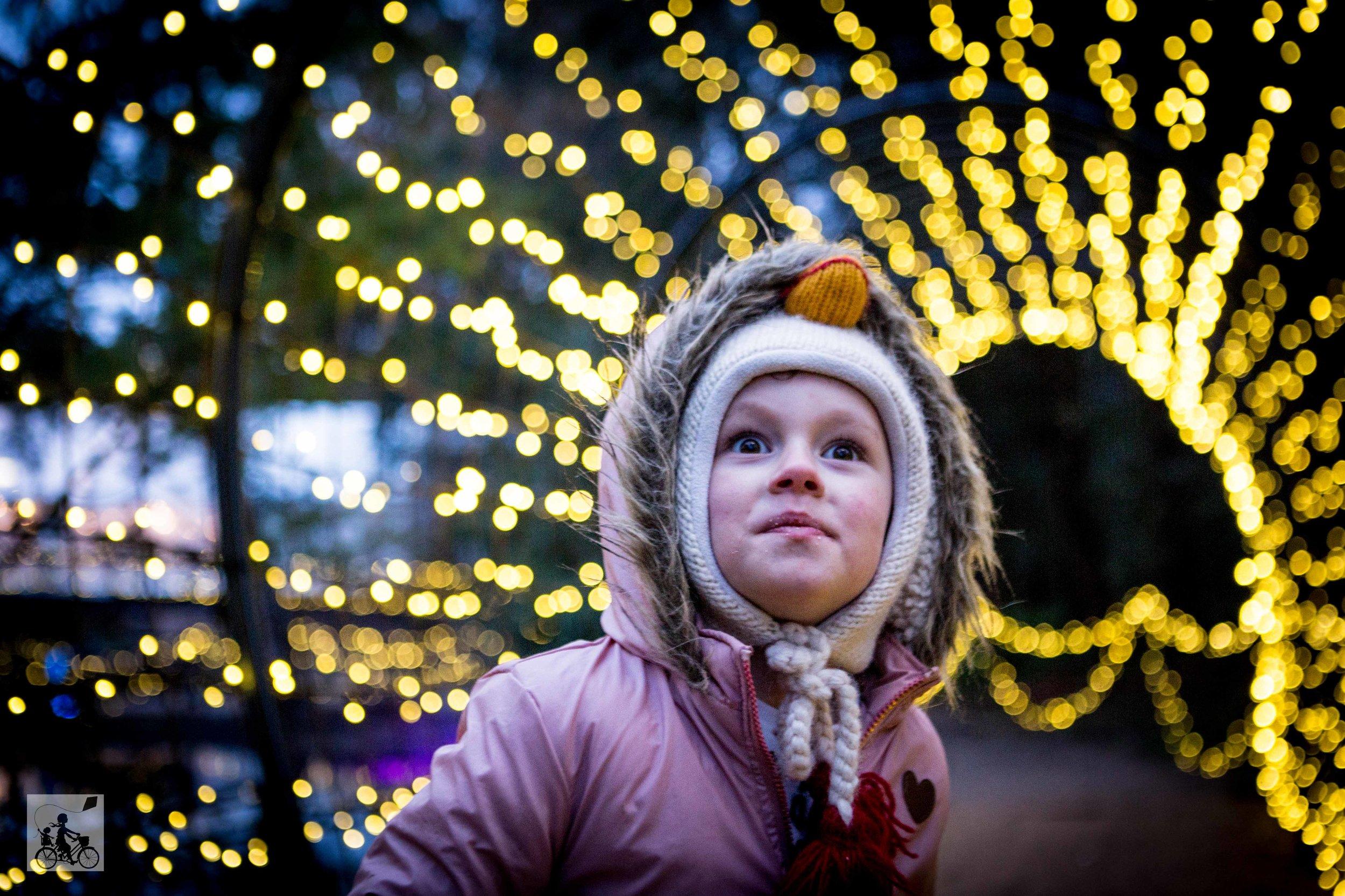 Sovereign Hill Winter Wonderlights - Mamma Knows Melbourne (28 of 74).jpg