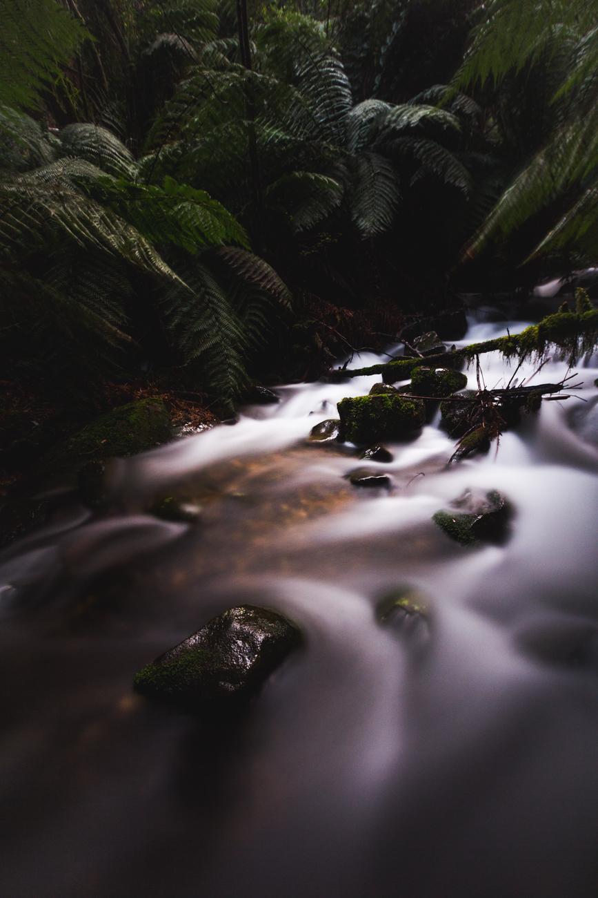 03_Yarra Valley