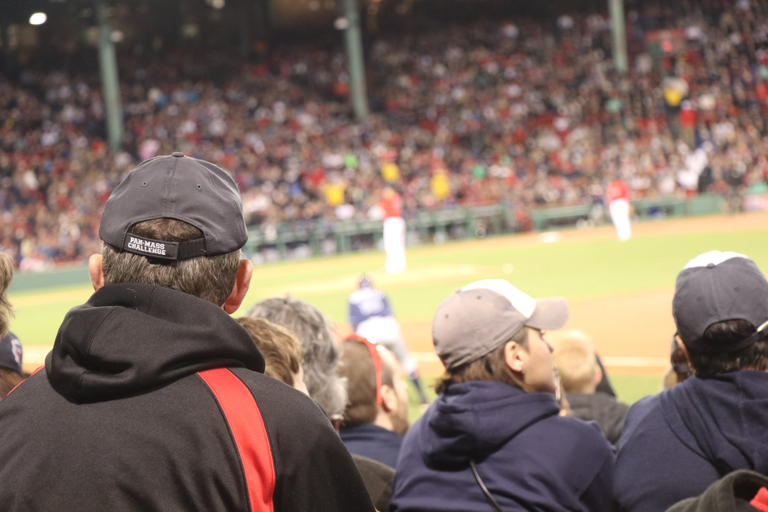 Fan watching the game - Rays up at bat - Sox in the field