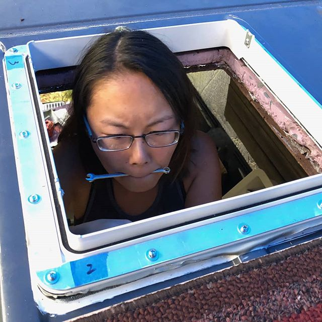 Today a wild Shelly is spotted thru yet another new hole in the van, while snacking on a small wrench. . . .