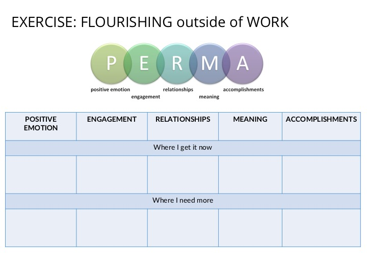 PERMA model.jpg