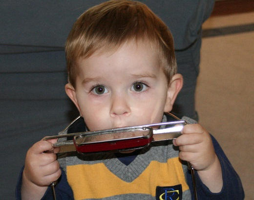 harmonicabot.jpg
