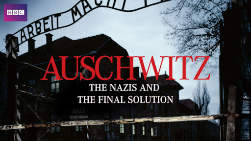 auschwitz and the final solution.jpg