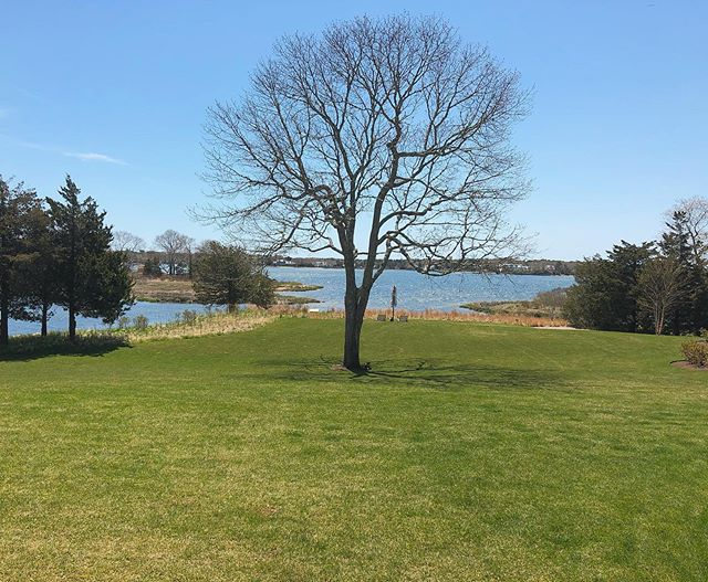Thank goodness for some sun ☀️🙏🏻for this picturesque site visit in the Cape yesterday! #summersoiree #seasideparty #capecodevents #tentedevents #bostonevents #bostoneventplanner #newenglandevents #newenglandeventplanner