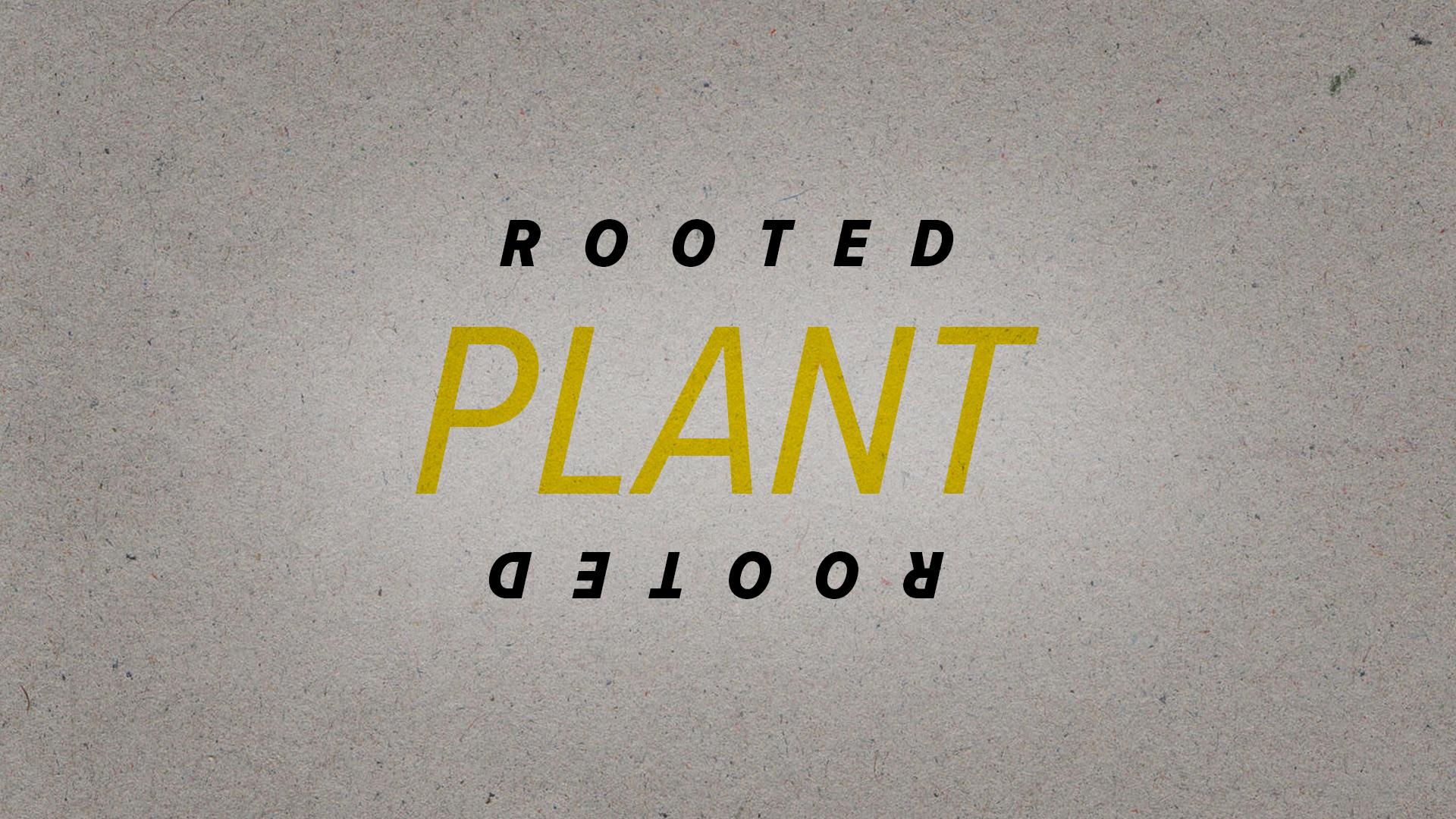 Rooted_Plant.jpg