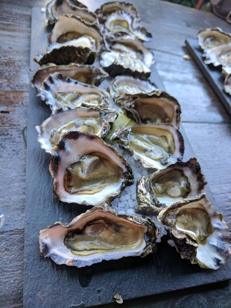 Tallula darling, luxury lover, foodie companion, luxury food lover, oysters