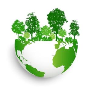 Hunt Boiler Green World.jpg