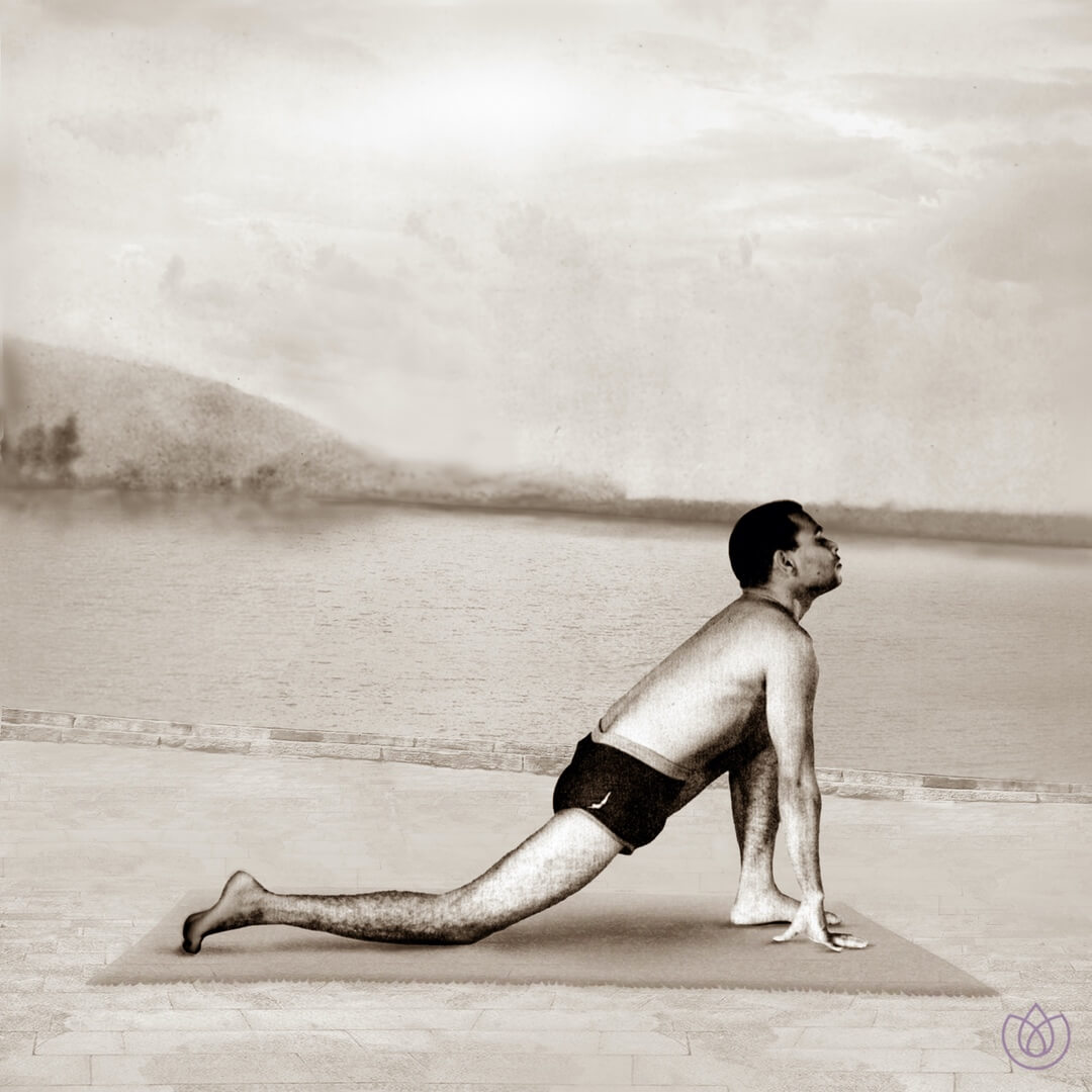 Step 4: Low Lunge/ Equestrian pose (Ashwa Sanchalanasana) - Inhale. Take a long step backwards with your right leg as far as possible. Lower your right knee to the floor and the toes stretch backward.The left foot remains between the hands with the sole of the foot flat on the floor. Gently look up.