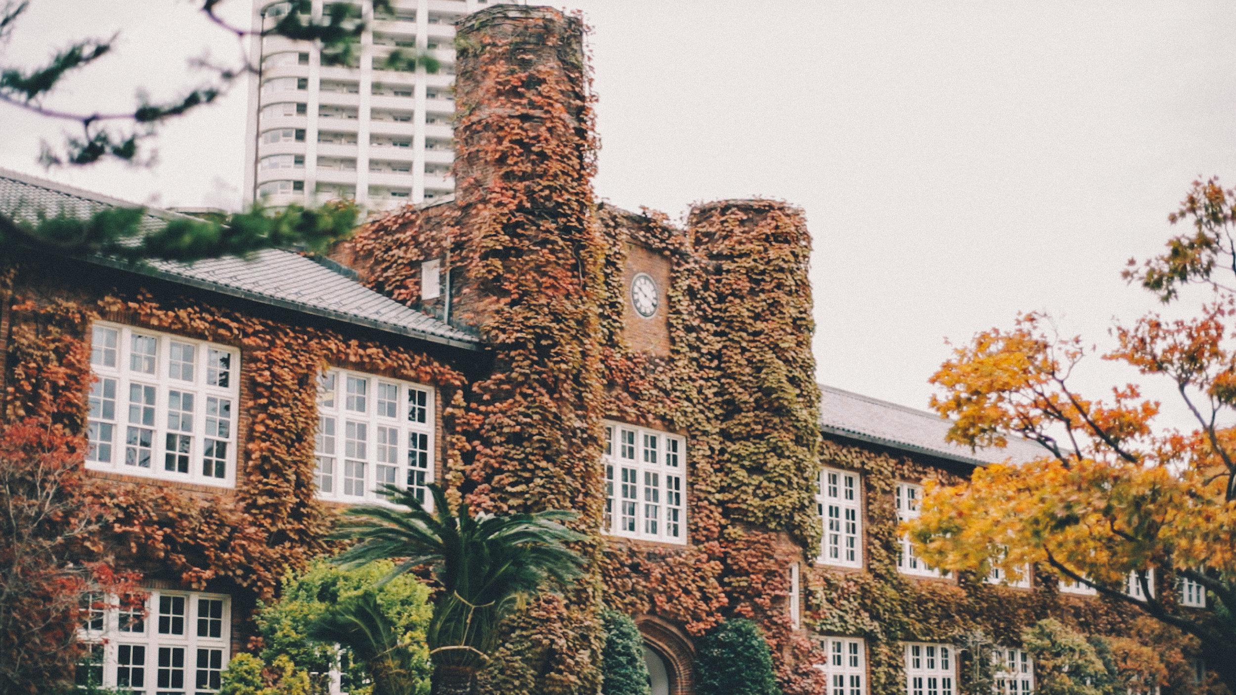 rikkyo_autumn28.jpg