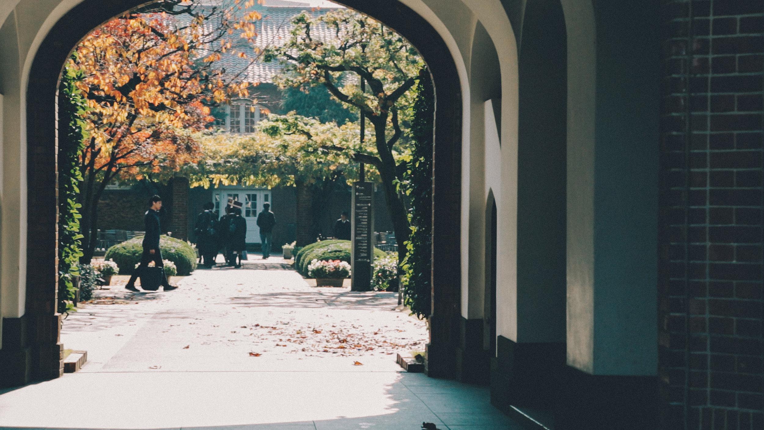 rikkyo_autumn6.jpg