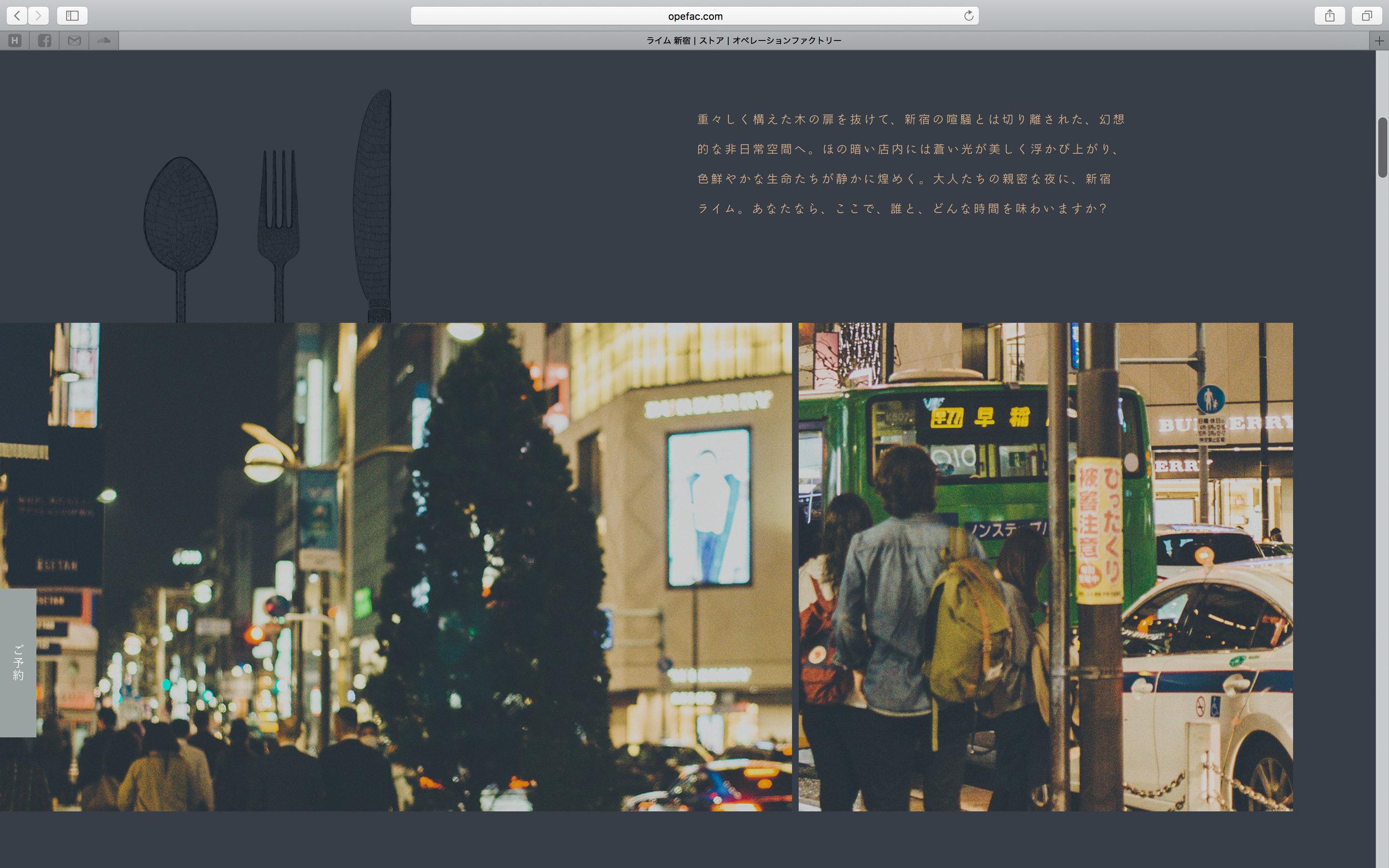 of_web-17.jpg