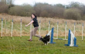 Doing agility with Toby. Photo credit: Paul McNama