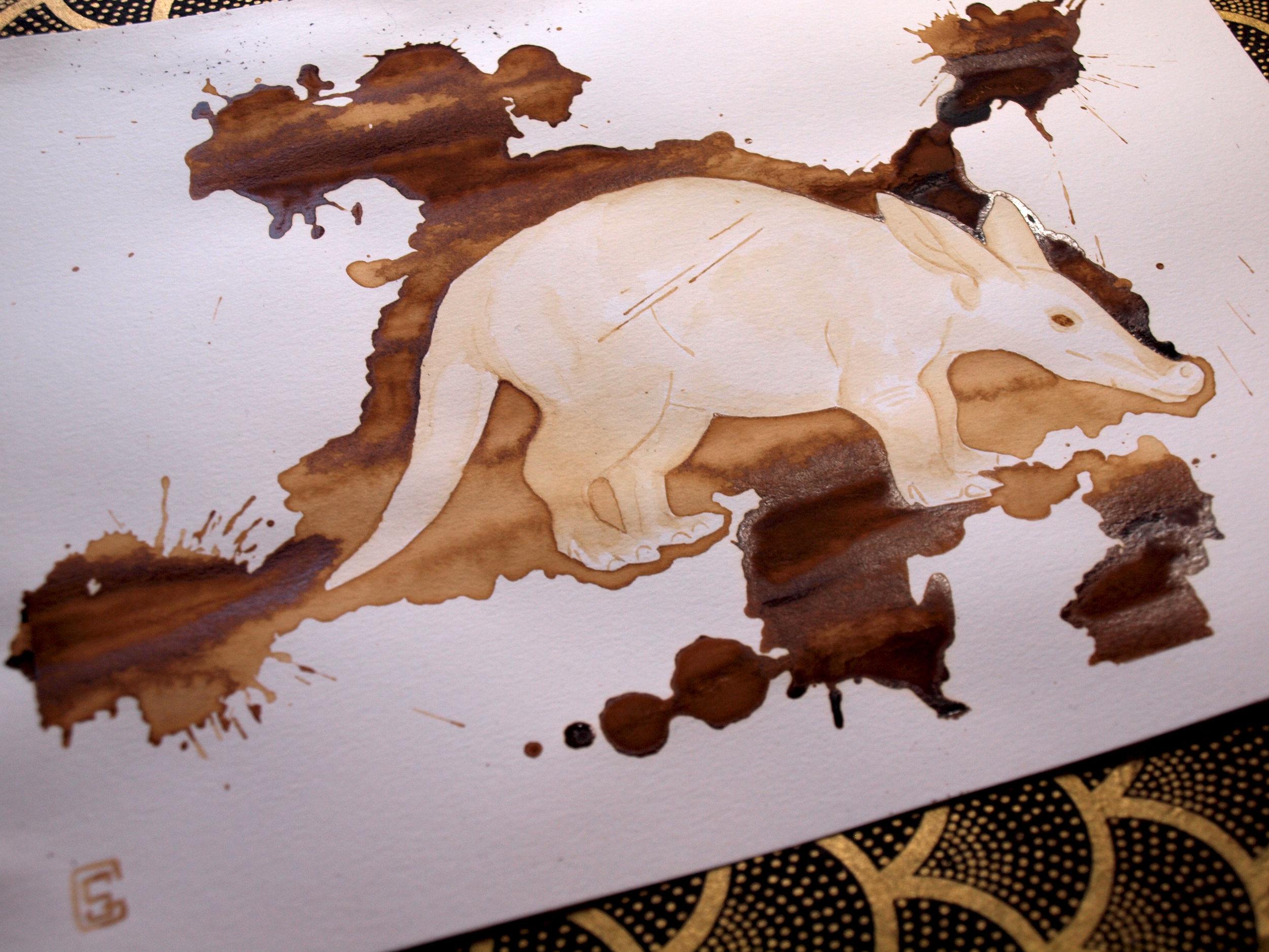 aardvark2.jpg