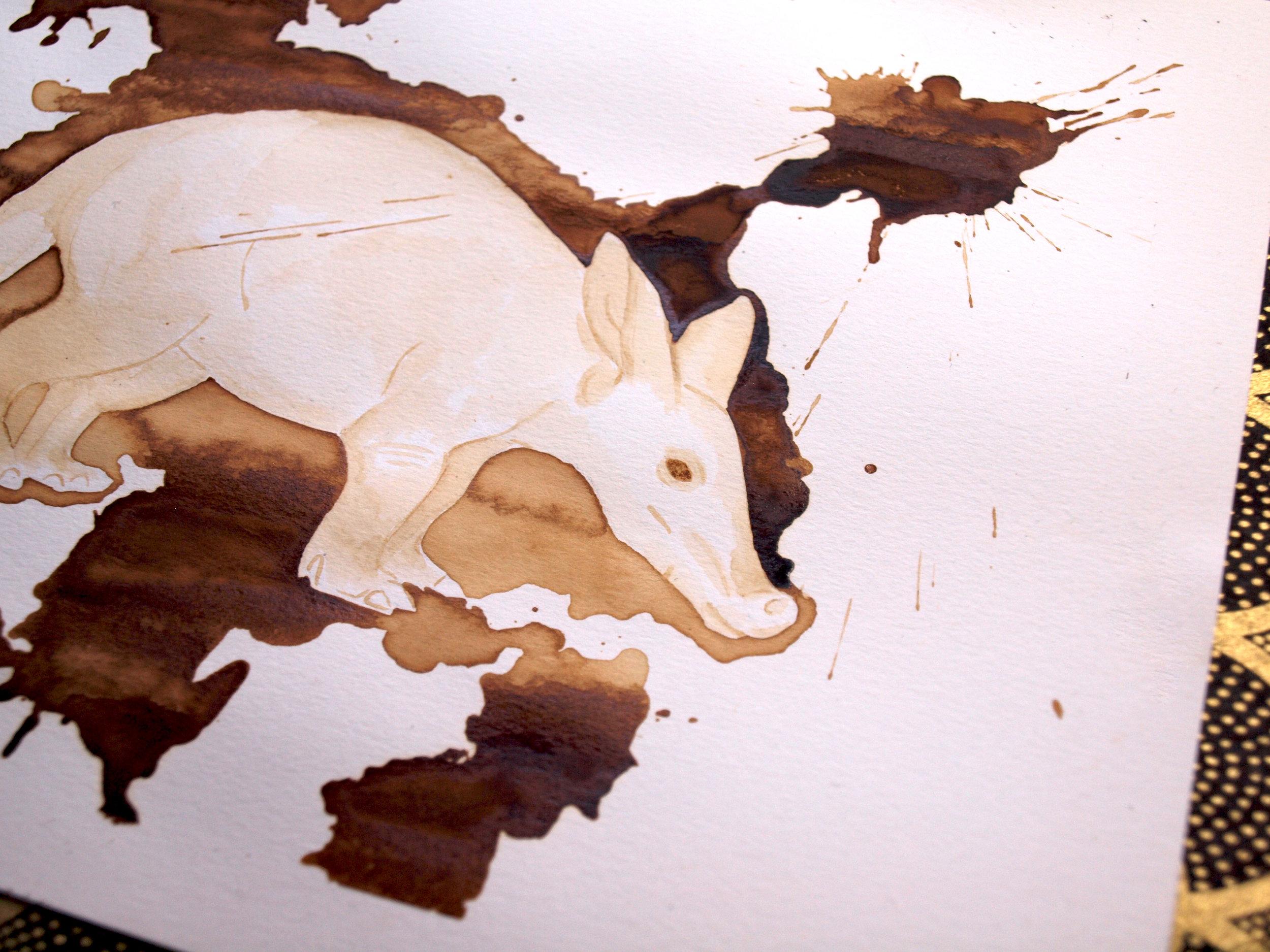 aardvark3.jpg