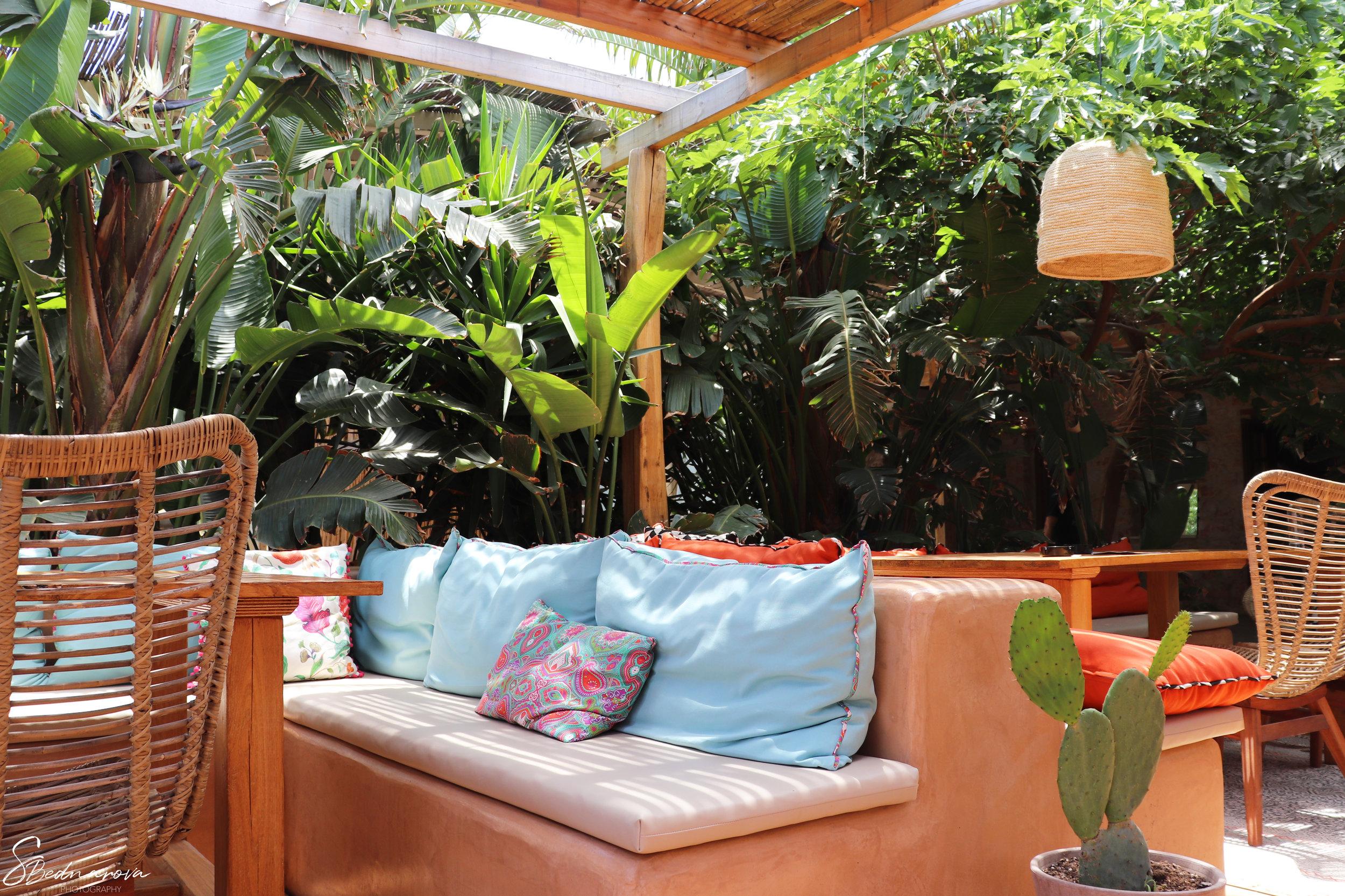 cactus corner.jpg