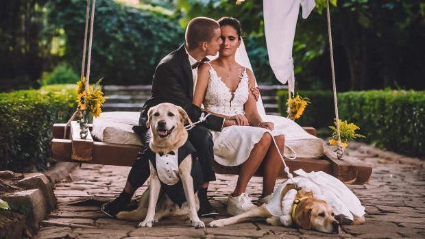 """Виктор и Калина   Фондация """"Очи на четири лапи """"  Виктор и Калина са неразделна двойка. И двамата много си падат по екстремните преживявания, а компания по време на техните приключения им правят техните кучета водачи, обучени от фондация """"Очи на четири лапи"""" с невероятната подкрепа на доброволци приемни стопани. За да предадат доброто нататък, Виктор и Калина също са доброволци и нямат търпение да ти разкажат това-онова."""