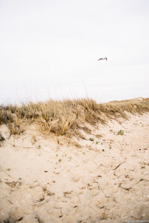 harkers-island-north-carolina-wedding-photographers-23-min.jpg