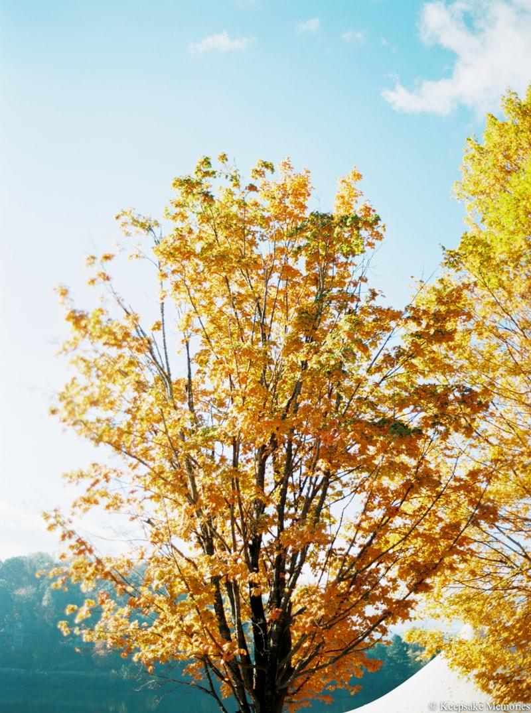 lake-junaluska-asheville-nc-wedding-photographers-27-min.jpg