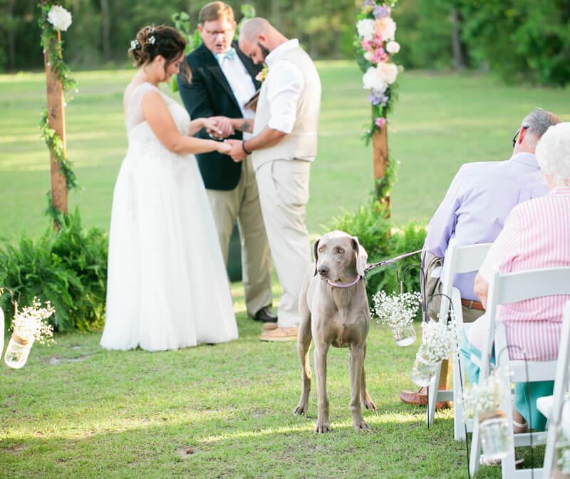 backyard-new-bern-wedding-photos-5.jpg