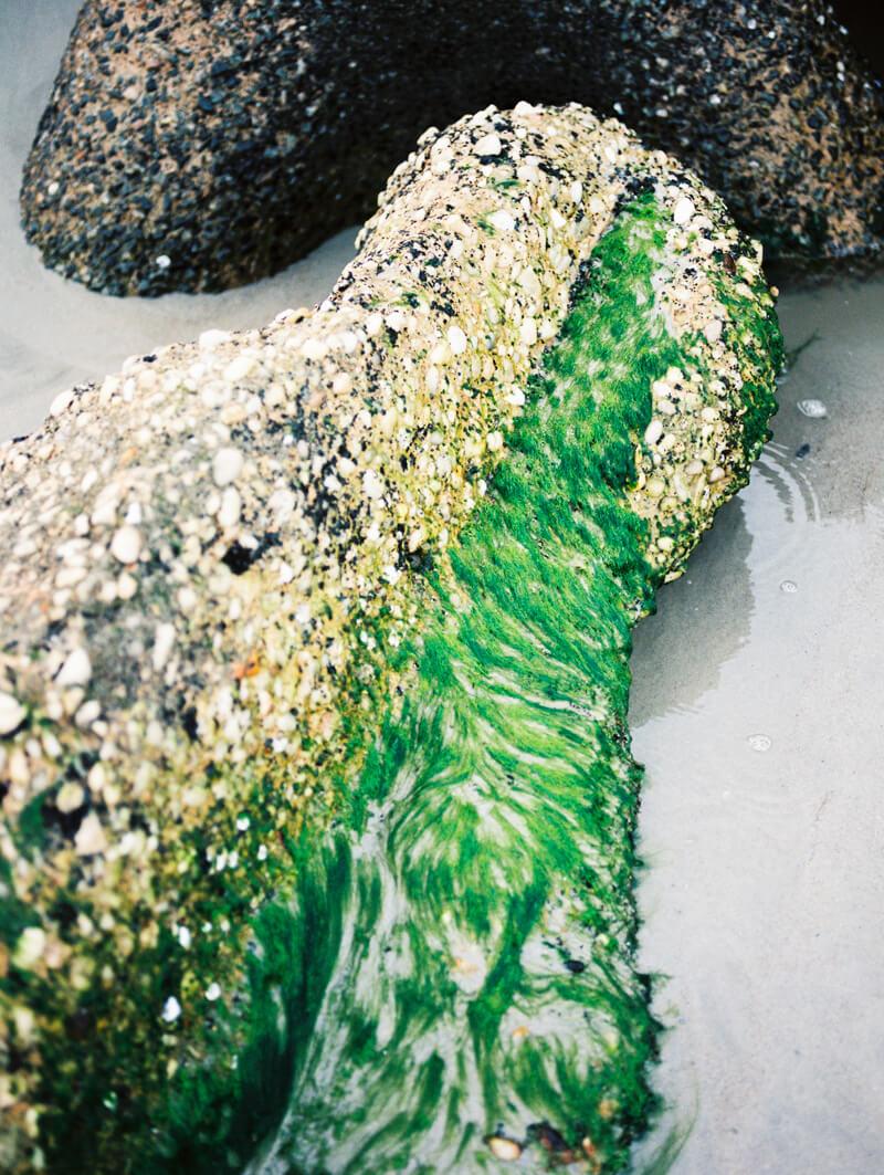 kure-beach-engagement-photographers-20.jpg
