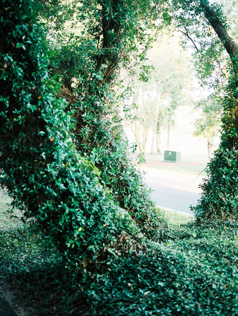 charleston-sc-travel-photos-16.jpg