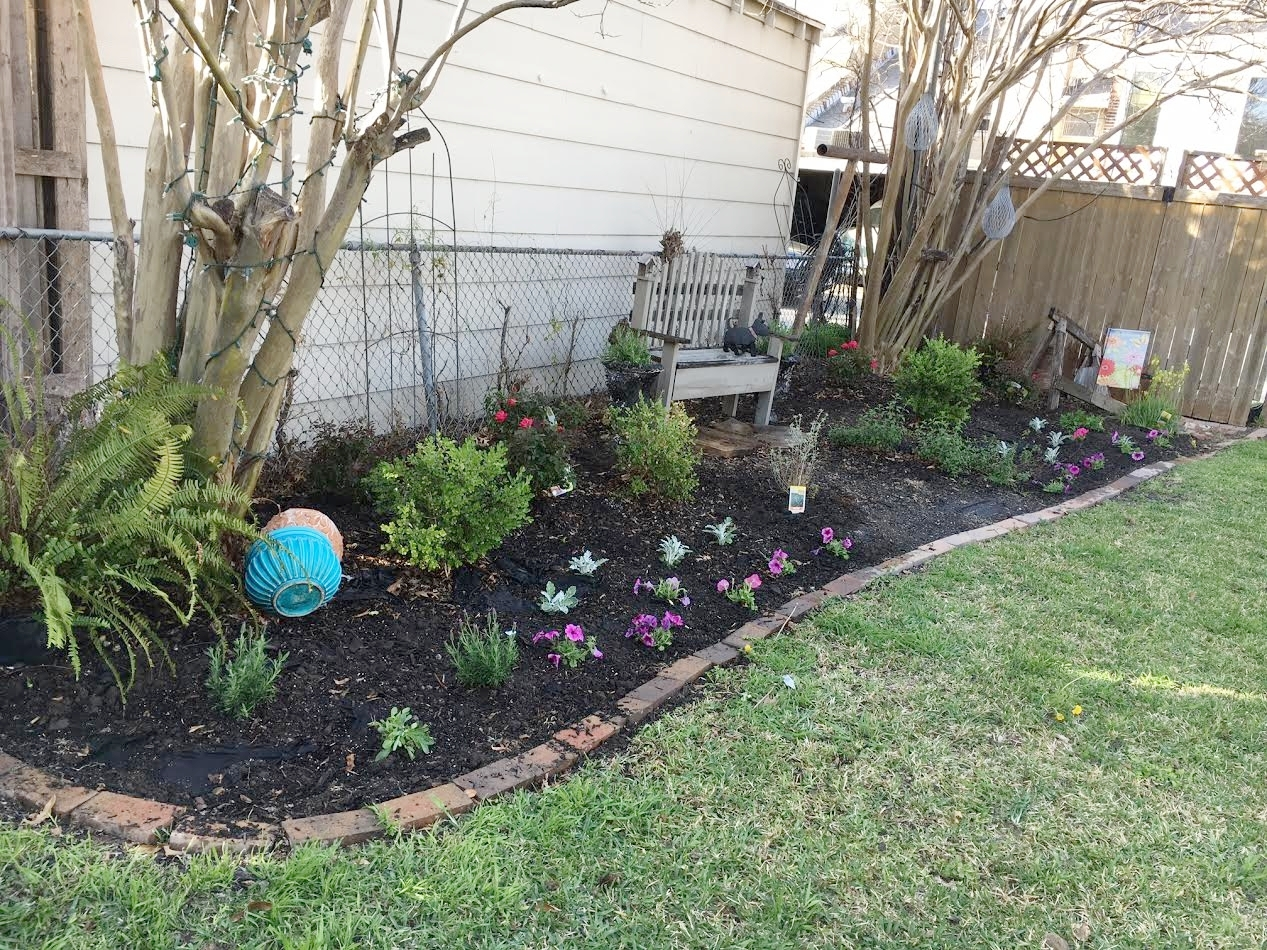 This is an old photo before we redid our back fence and removed the old chain link!