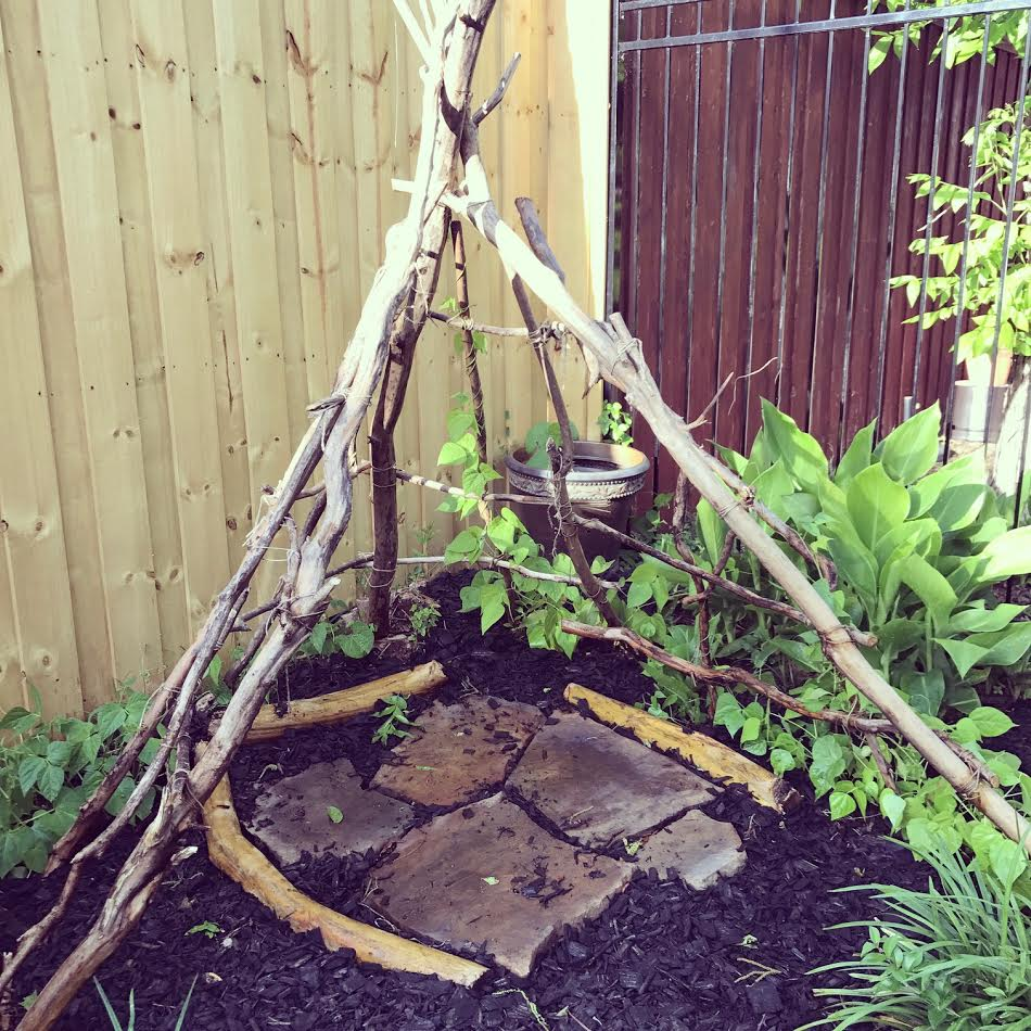 Beginning to grow up the teepee!!
