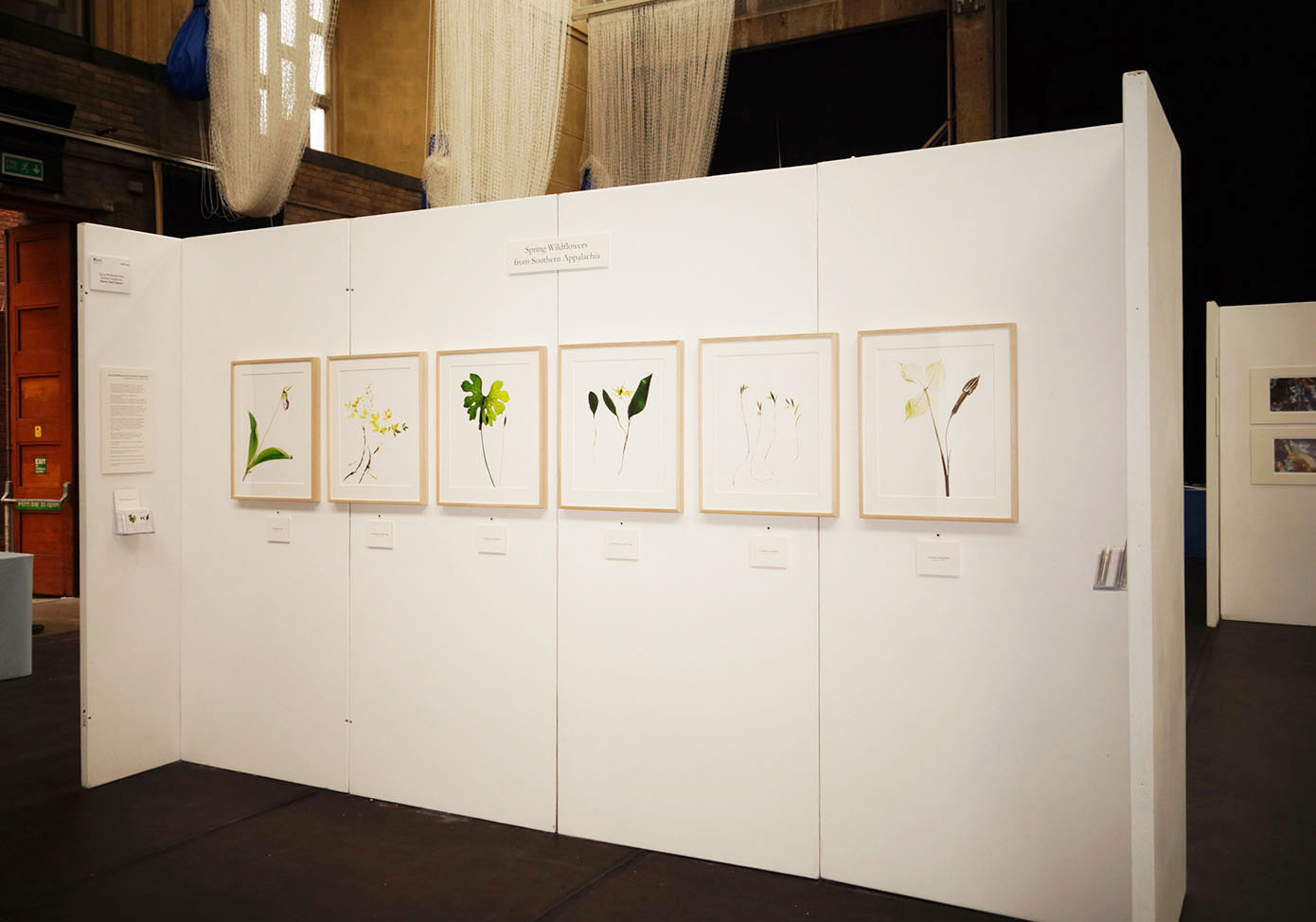 Exhibit at the Royal Horticultural Society's London Plant and Art Fair, 2018.