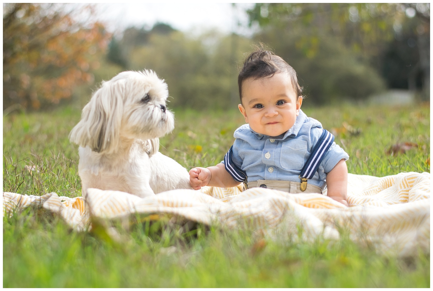 this is an image of a six month old baby boy sitting outside on a blanket next to their family dog. the child is smiling and looking at the camera.