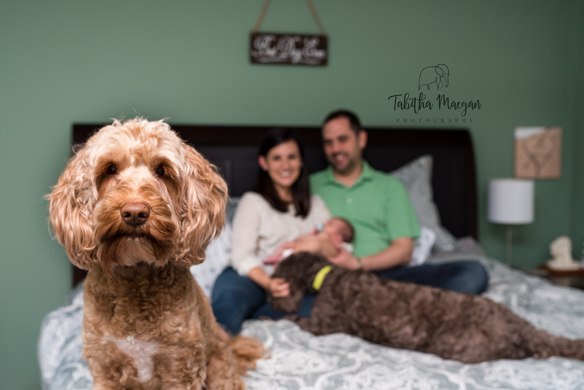 lifestyle-newborn-session-atlanta-georgia-5