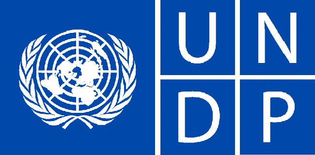undp-logo.jpg