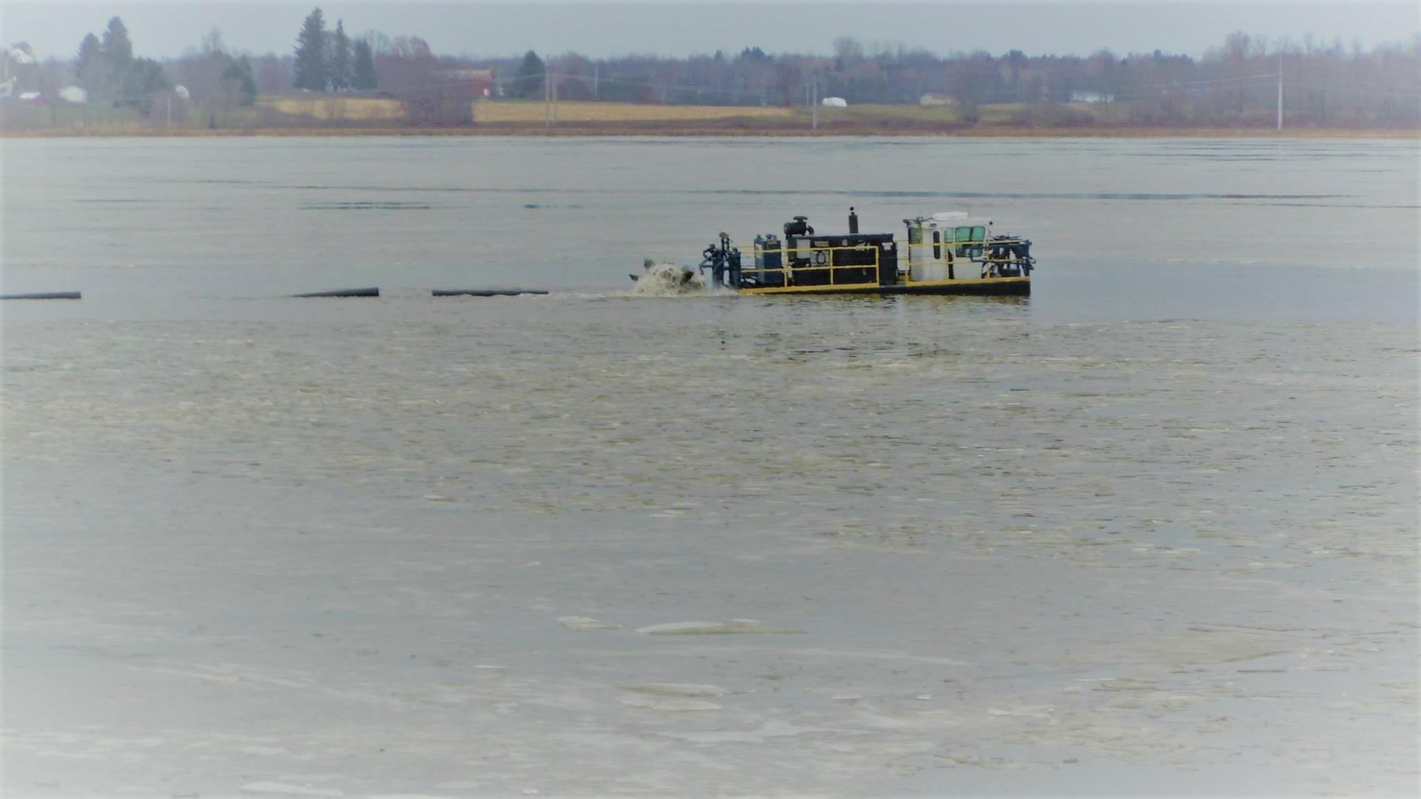 Lake Revitalization Project