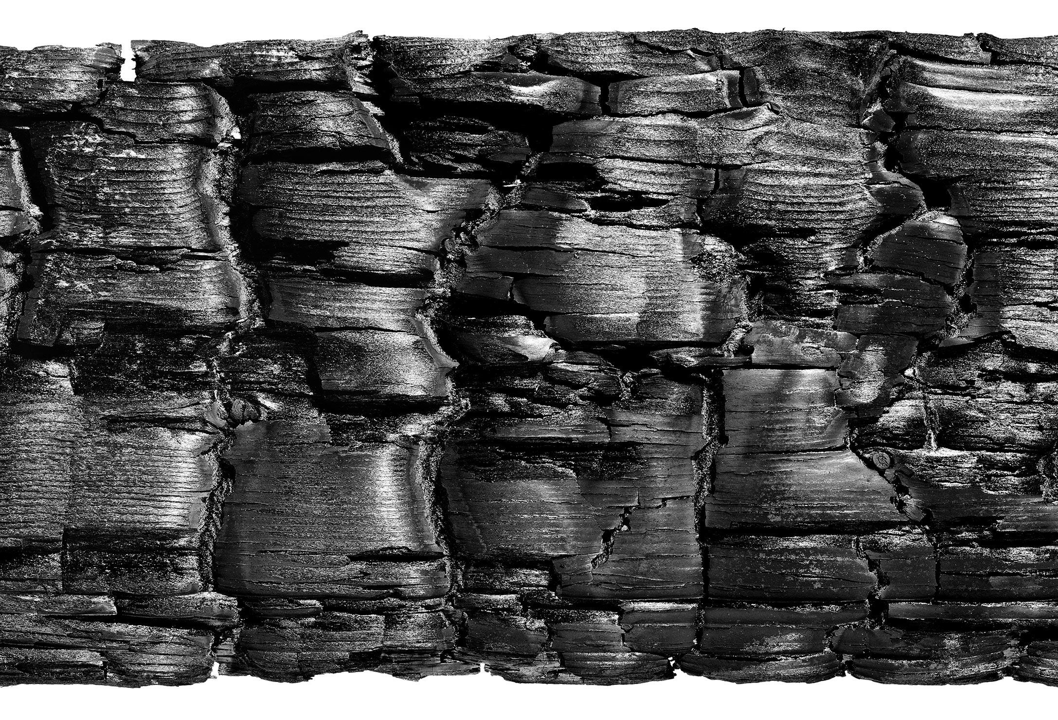 63-Burnt-woodExibit.jpg