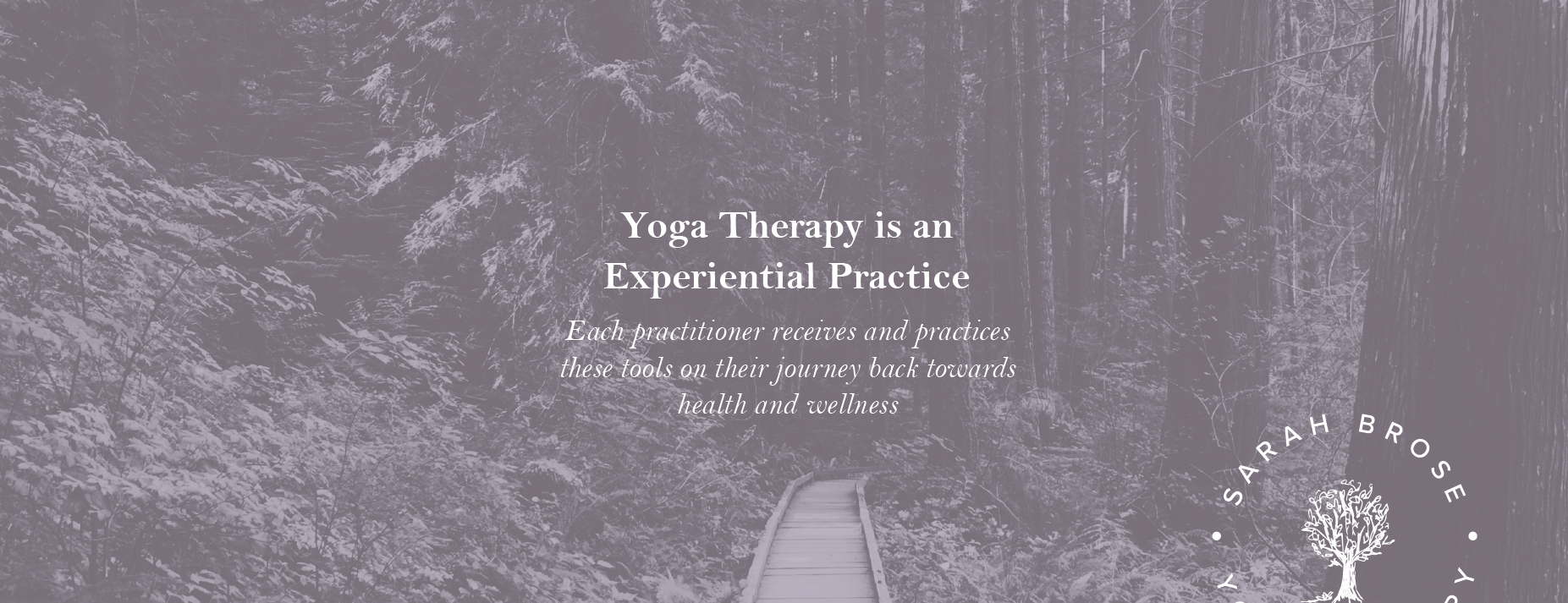 sarah brose yoga therapy brand design