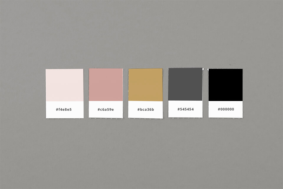 typenest wordpress developer brand color swatches