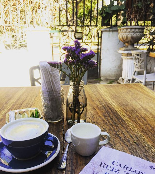 Strong coffee, a sunlit garden, a book. Once in a while there is no mystery to unlocking happiness.